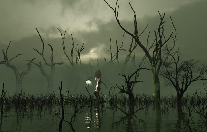 Swamp Lights